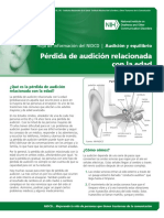 Perdida audiologia adulto