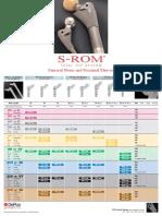 S-ROM stem system