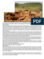 Erosion Affects the Environment in a Number of Ways