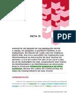 PNE - Meta 15 e 16