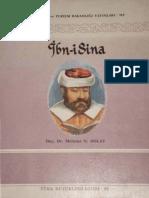 Mehmet N. Bolay - İbn-i Sina