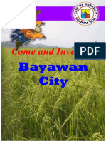 Bayawan Investment Profile_2011