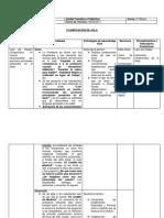 Planificación DUA Pabla Rivera (1)