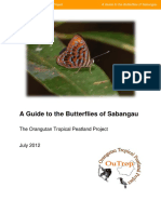 The Guide to Butterflies of Sangbangau