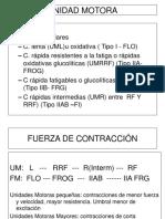FIBRA MUSCULAR Y DEPORTE