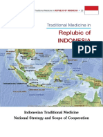traditional_medicines_in_republic_of_indonesia.pdf