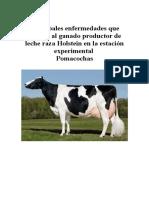Principales enfermedades que afectan al ganado productor de leche raza Holstein.docx