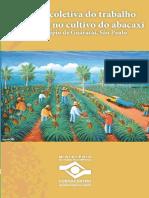 Cultivo Do Abacaxi3