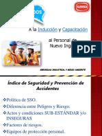 Induccion Seguridad Industrial 2019