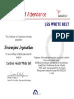 Sixsigma-white Belt (1)