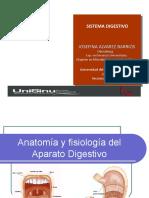 aparato_digestivo (3)