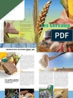 Le guide des Cereales 2013