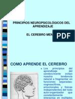 Cerebro Mente[1]