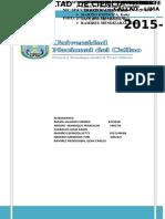 268773883-TRABAJO-NICSP-16-y-17final2-doc.doc