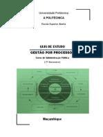 Guia de Gestao de Processos _ VF