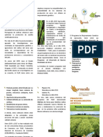Programa Mejoramiento Genetico-Aproscello