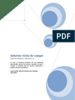 Informe Visita de Campo