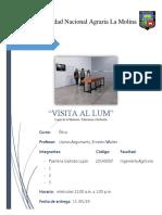 INFORME 1 VISITA LUM.docx