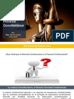 Derecho Procesal Constitucional diap.pptx