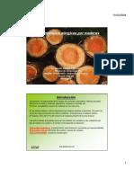 alergia_a_maderas.pdf