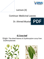 4) Lect. 4 Leaf (Continue, Medicinal Leaves)(١)