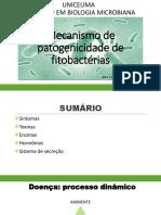 Mecanismo de Patogenicidade de Bactérias Fitopatogênicas