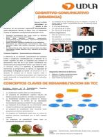 Poster TCC