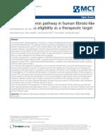 Wnt b catenin pathway in human fibrioman-like diseases