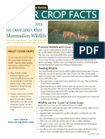 Cover Crop Effects on Deer and Other Mammalian Wildlife