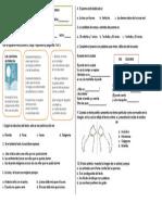 5° TEXTO POETICO-CALIGRAMA.docx