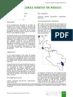1255-6179-1-PB.pdf