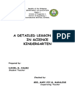 lesson plan Final Demo.docx