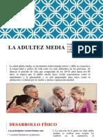 ADULTEZ MEDIA1