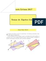 TeoriaLiviana-REV2017