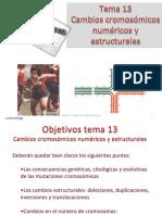 Tema 13 Mutación Cromosómica2015!5!19D13_24
