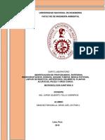 Informe 4 en PDF