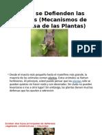 Cómo se Defienden las Plantas (Mecanismos de.pptx