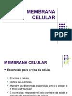 MEMBRANA CELULAR 1.ppt