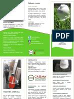 Brochure Cassma Consultores Sac