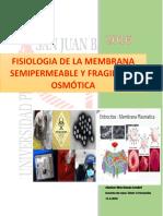 305962328 Practica Nº1 Fisiologia de La Membrana Semipermea
