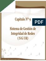 Seminario O&G - 2009 Cap.9 - SGIR
