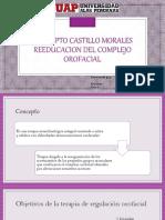 Complejo Orofacial- Castillo Morales
