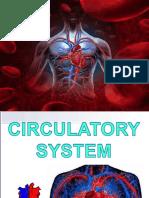 1.badetz_circulatory_system (1).pptx