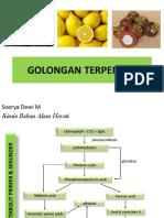 GOLONGAN TERPENOID.pdf
