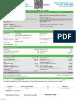 607321923110029685.pdf