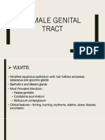 FEMALE GENITAL TRACT.pptx