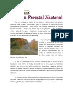 1RA SEMANA - Semana forestal nacional..doc