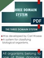 THE-THREE-DOMAIN-SYSTEM