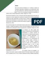 COLERA 2-SHIGELLA COMPLETO.docx