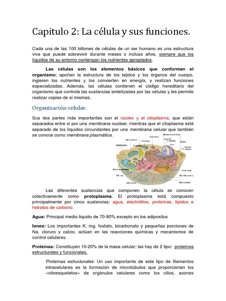 244434918 Fisiologia De Guyton Resumen Capitulo 2 Docx